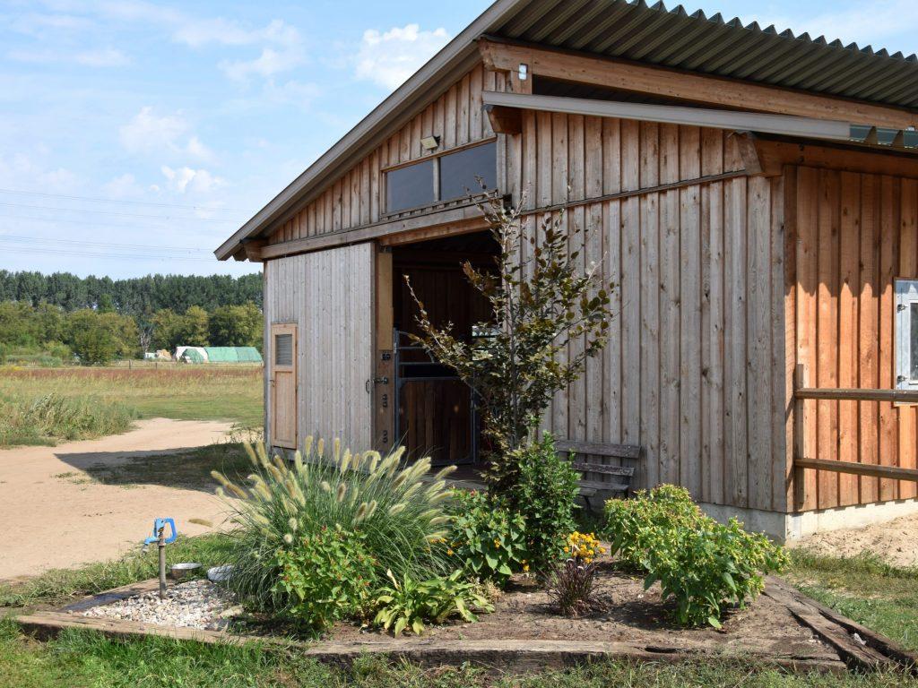 Stall-Eingang